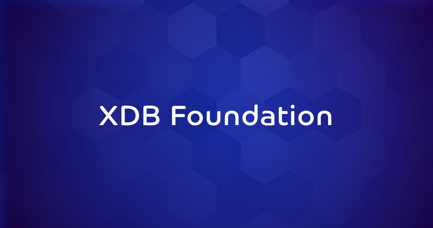 XDBFoundation1
