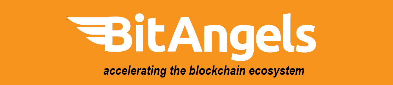BitAngels3