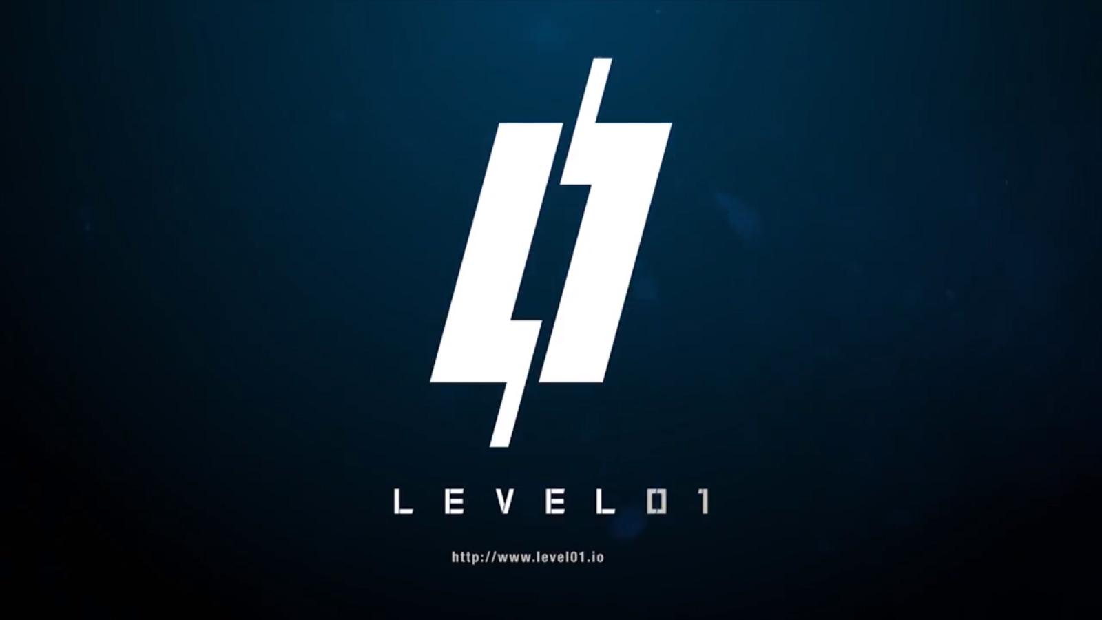 Level011