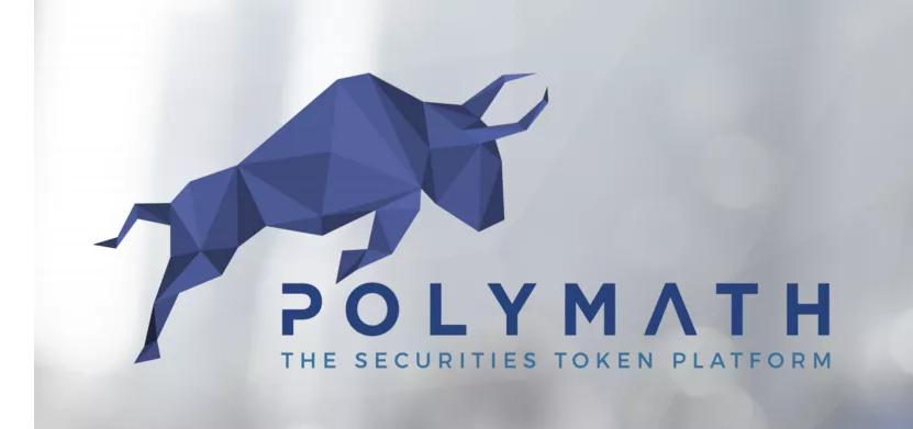 Polymath1