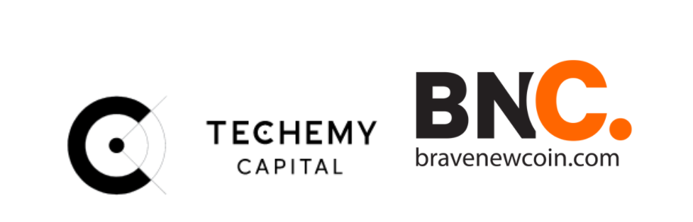 Techemy Capital and BNC Logo1